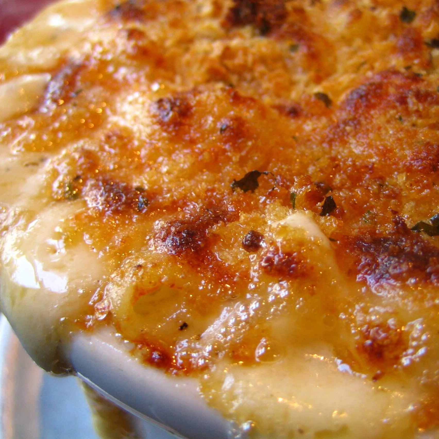 Flickr_Rick_349850413--Macaroni_and_Cheese_Closeup